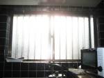 暑い、眩しい「窓から差し込む日差しが眩しい~~!」1
